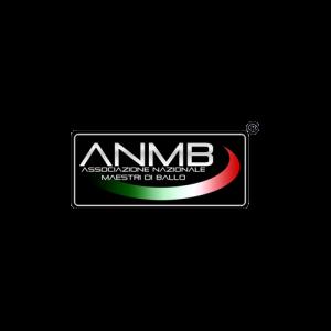 ANMB-trasp 500